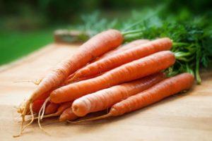 Grow-carrots-in-cups