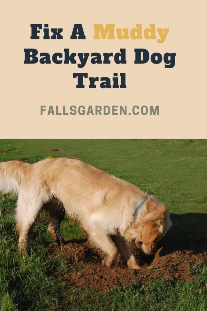 fix-a-muddy-backyard-dog-trail
