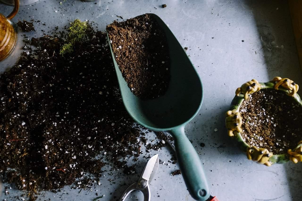 potting-mix-soilless