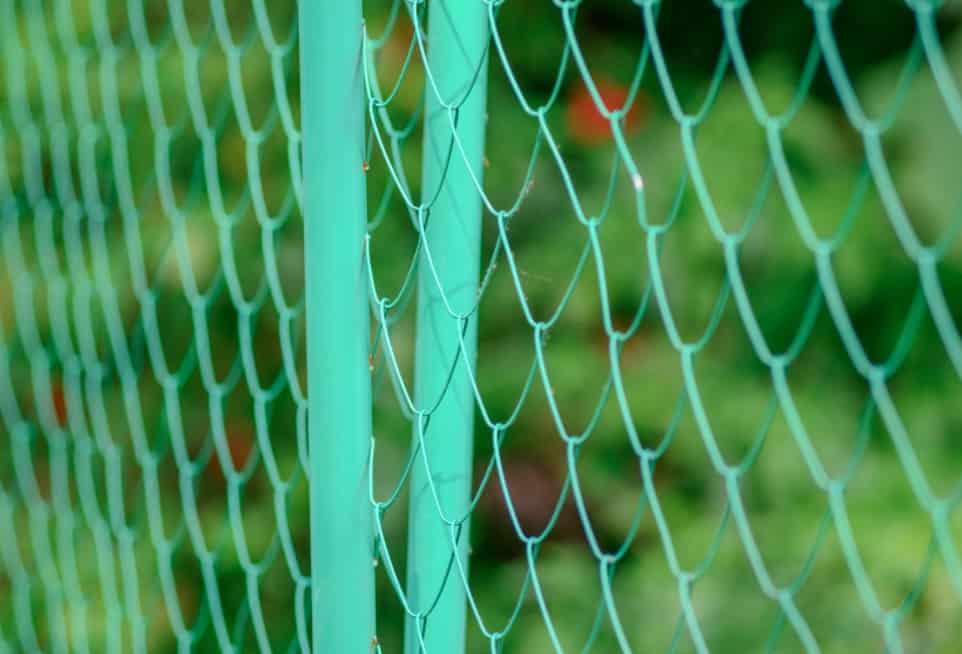 rabbit-wire-fence