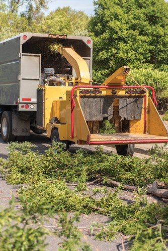 Rent-or-buy-a-wood-chipper