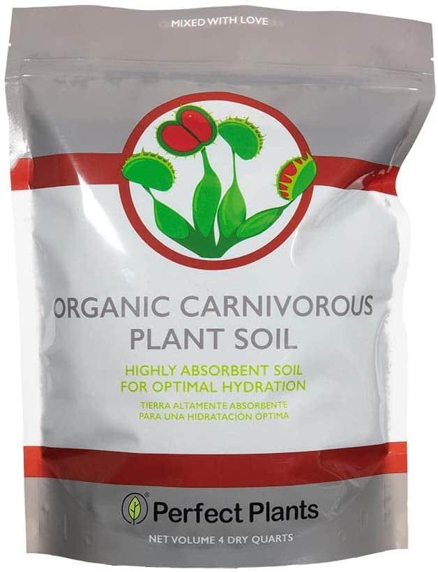 plant-soil