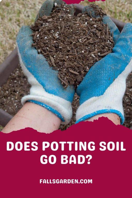 Does-Potting-Soil-Go-Bad