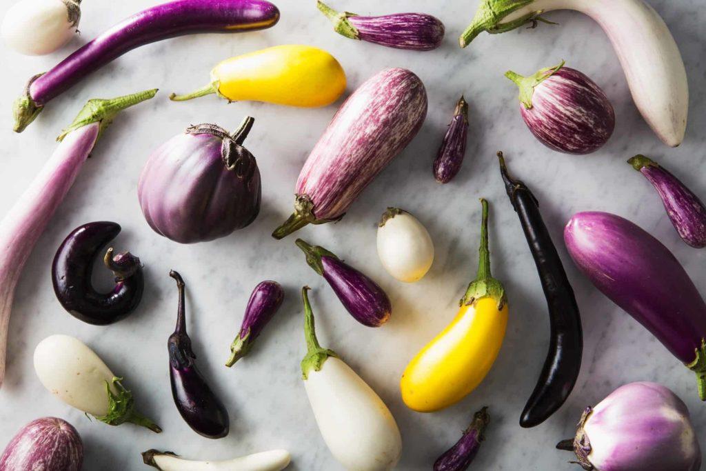 different-varieties-of-eggplant