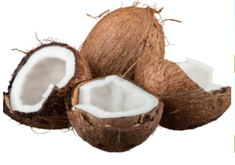 coconut-fruit