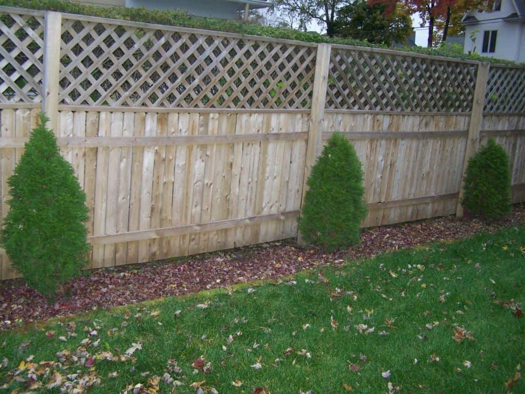 mulching-to-prevent-weeds