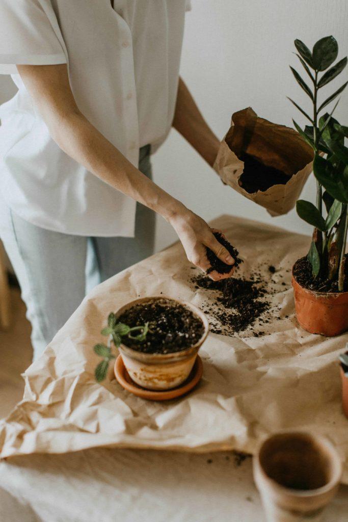 store-potting-soil