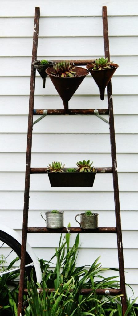 Use-ladder-for-hanging-plants