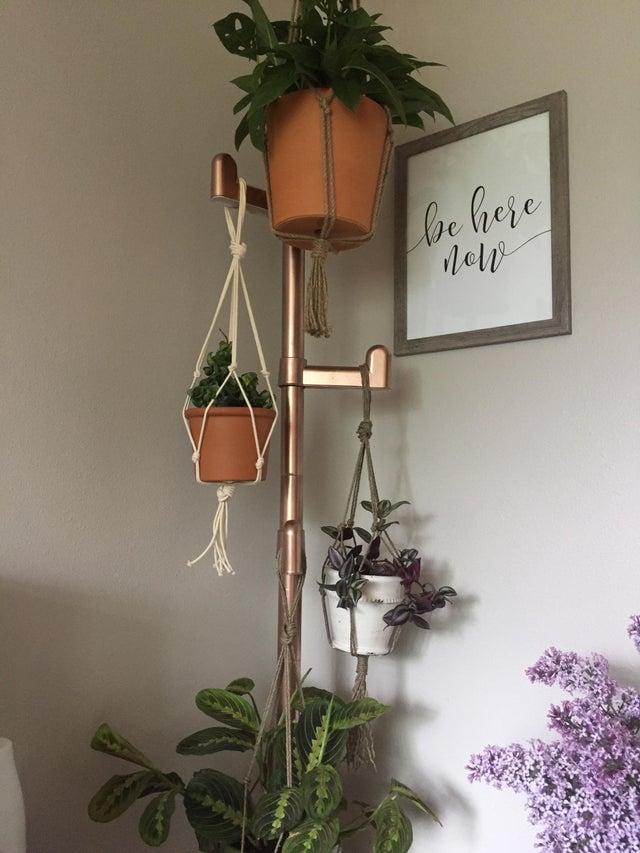 Coat-rack-for-hanging-plants