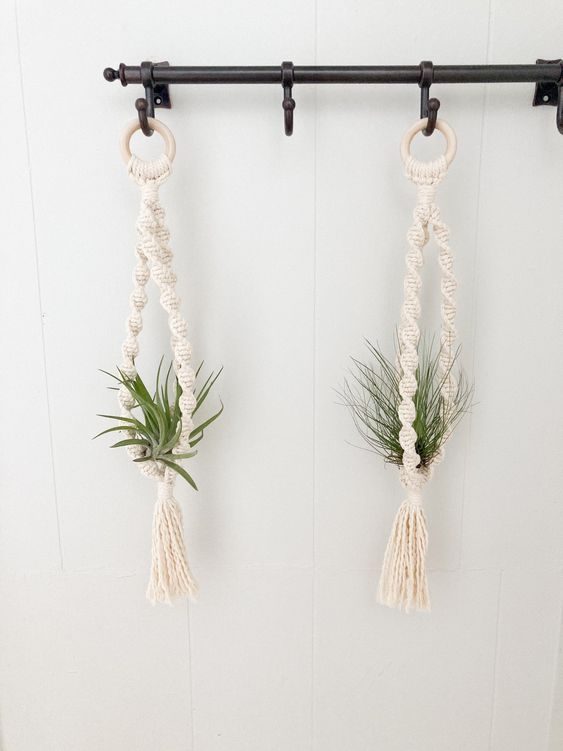 Wall-mount-plant-hooks