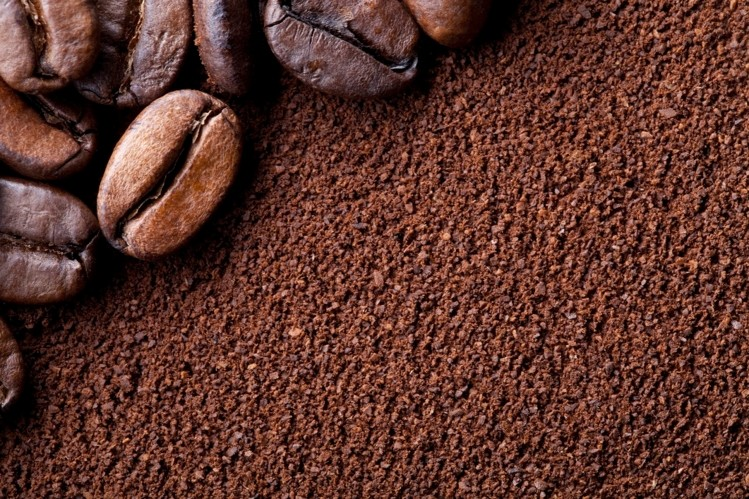 Coffee-grounds-for-snails